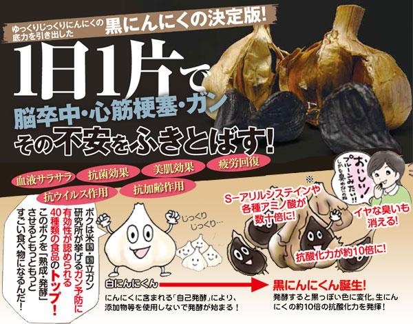 湧酵(ゆうこう)黒にんにく 1個(29-1000)