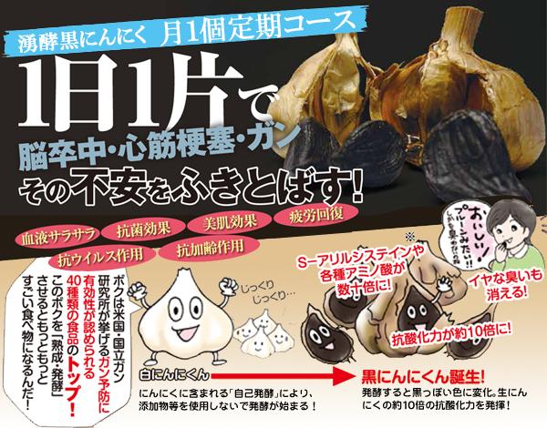 【定期発送】湧酵(ゆうこう)黒にんにく月1個コース(29-1001)