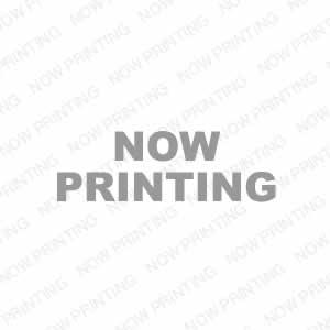 ライジング・ドラゴン (廉価版) ブルーレイ e通販.com