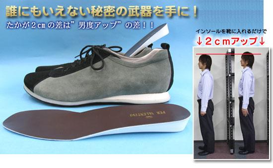 シークレットインソール 1足(26-0124) e通販.com