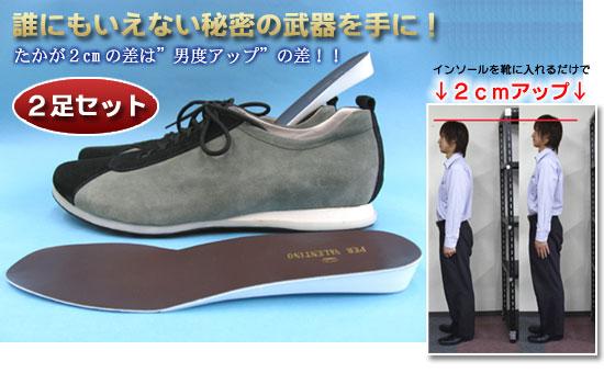 シークレットインソール 2足組(26-0125) e通販.com