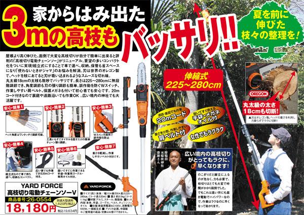 【NEWタイプ】高枝切り電動チェーンソーV(ファイブ)(26-0554) e通販.com